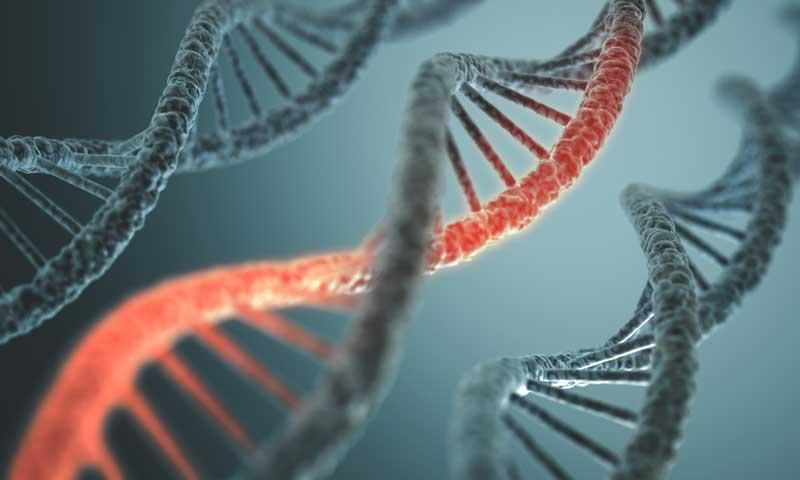 Los European Dermocosmetology Days se centrará en la genómica personalizada y la epigenética