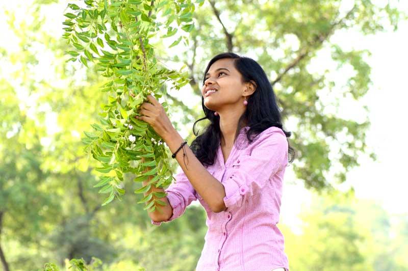 Juventud en la piel: las propiedades del árbol de Neem