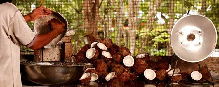 La fiebre del aceite de coco continúa