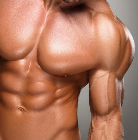 Wonder - Musculação Estética