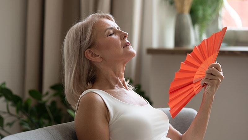 Salvia - Menopausia