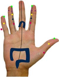 manopuntura