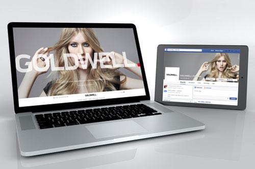 Nueva web de Goldwell Espa�a.