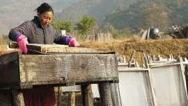Por noveno año consecutivo, la firma envuelve sus productos en papel lokta, fabricado a mano en Nepal. Así, ayuda a más de 5.500 fabricantes locales a mantener a sus familias y a reconstruir sus hogares tras el terremoto del pasado ejercicio
