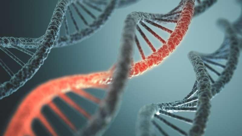 La 28ª edición de los European Dermocosmetology Days se centrará en la genómica personalizada y la epigenética