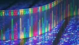 La identificación y validación funcional de las proteínas implicadas en la tumorigénesis son pasos esenciales para frenar su avance en el campo de la medicina de precisión del cáncer
