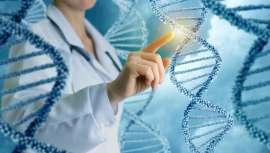 En sus distintas aplicaciones también actúa en la belleza, donde la medicina y cirugía regenerativa se sirve de tratamientos que se realizan mediante células madre