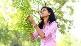 O seu óleo emprega-se em diversos setores e, na beleza, preserva o ecossistema da pele e o seu bom funcionamento