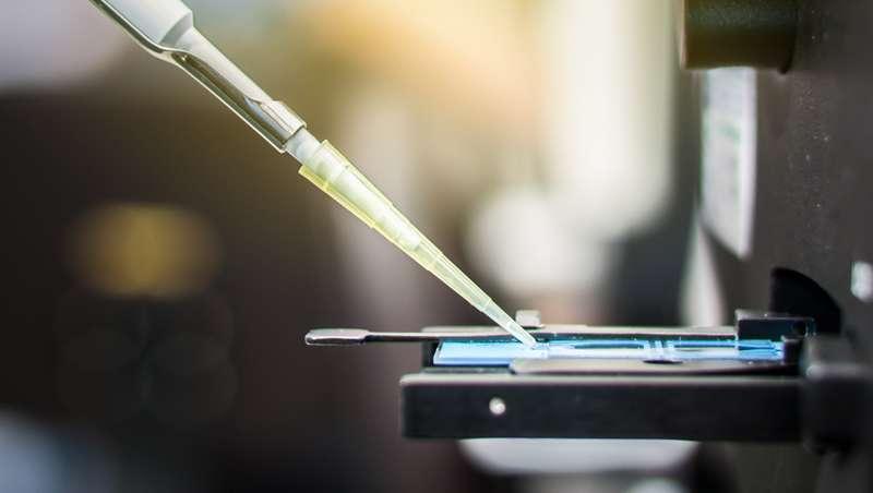 Os parabenos nos cosméticos podem danificar o esperma e a fertilidade masculina