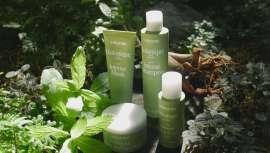 Cuatro productos con acción activadora y revitalizante gracias a sus extractos naturales de ginseng. Las esencias de menta y limón estimulan la piel y el cabello proporcionando sensación de frescura natural