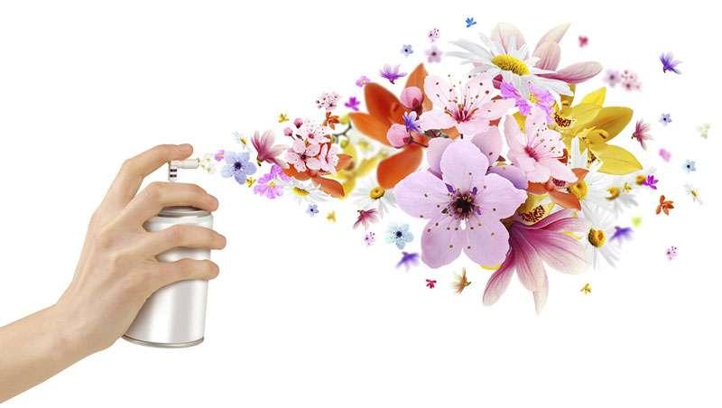 La irresistible atracción de los aromas o cómo captar clientes a través del marketing olfativo