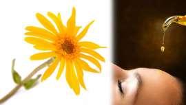 Es calmante, hidratante, inflamatoria y se emplea como remedio e ingrediente natural en la cosmética
