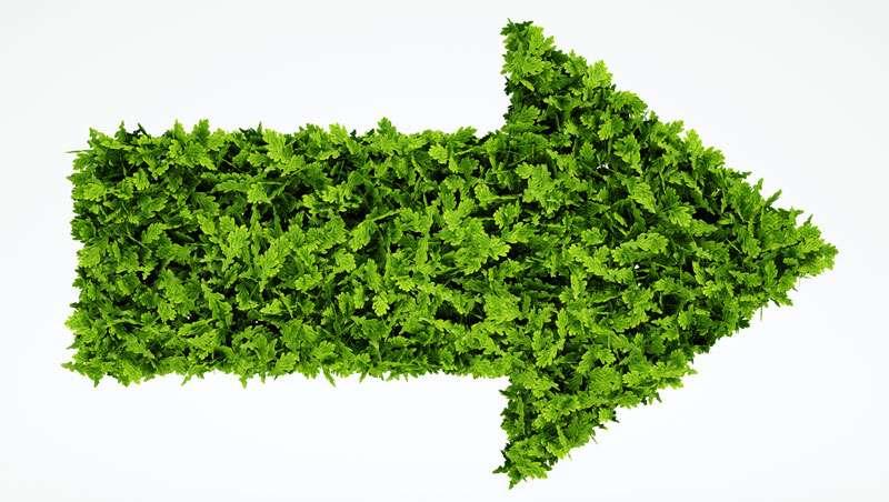 Sector Peluquería apuesta por lo verde