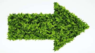 El sector apuesta con fuerza por lo verde