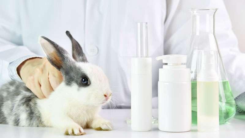 Cosmética no testada en animales