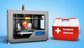 La preparación previa a una cirugía hace uso ya de la impresión 3D del órgano a trasplantar o que reconstruir como modelo. Pero no sólo eso, la impresión de distintas partes del cuerpo sirve para el aprendizaje de los futuros cirujanos