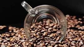El objetivo es nutrir, servir como antioxidante, activar la circulación sanguínea, estimular la quema de grasa y eliminar la celulitis