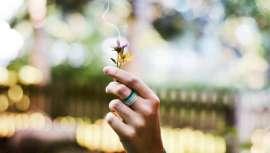 Um dos seus objetivos é conseguir que o cheiro do tabaco fique neutralizado e a sua aplicação é dirigida principalmente ao segmento da ambientação