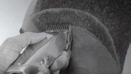 Las lecciones están diseñadas para ayudar a los lectores a comprender mejor sus herramientas de corte y también presenta múltiples tutoriales que cubren tipos de cabello y texturas, fundidos y estilos personalizados