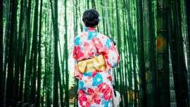 El bambú es una planta a la que las culturas asiáticas han otorgado desde hace siglos multitud de propiedades medicinales y espirituales