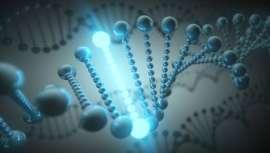 En total, 640.000 variaciones genéticas analizadas por un prestigioso equipo especialista para la prevención, diagnóstico, tratamiento, dietas, entrenamientos, suplementación y la mejora en general de la salud del paciente