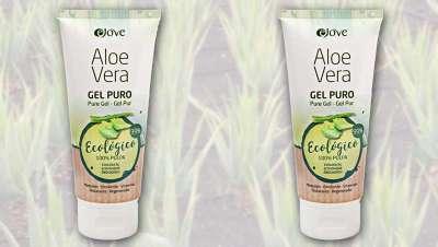 El Aloe Vera, el nuevo valor de las Islas Canarias