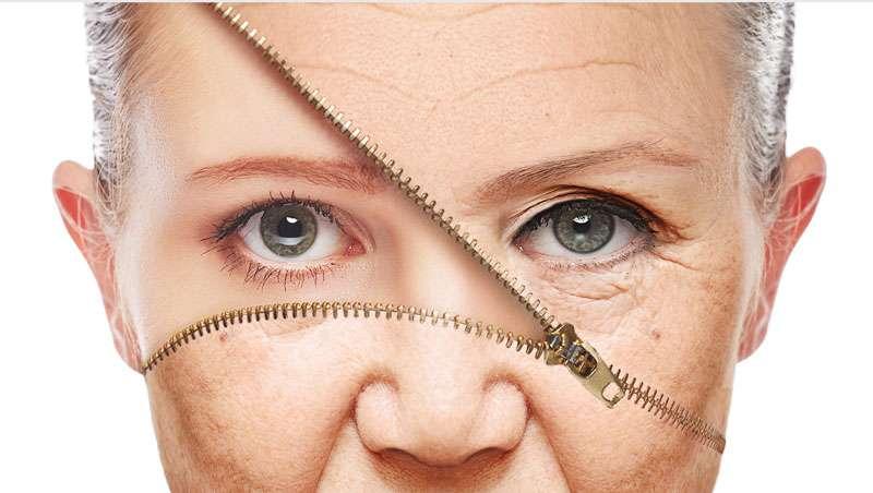Ralentizar el envejecimiento celular, objetivo de EuromedLab