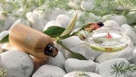 Basada en el Ayurveda, la Aromaterapia y las Flores de Bach, Terai Cosmética irrumpe en el panorama de la belleza de un modo natural y científico, de manos de su creadora, la doctora Verónica García