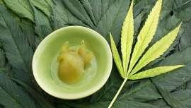 El cannabis ya ha revolucionado el mundo médico por sus características terapéuticas. Y, en la actualidad, posee gran impacto en otra industria, la cosmética.