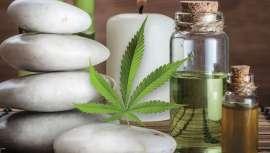 El cannabinol (CBD) es el nuevo superingrediente de la industria cosmética que está pillando desprevenidos a muchos. Llega ahora un nuevo e interactivo ebook para esclarecerlo todo acerca del uso de CBD en el salón de belleza