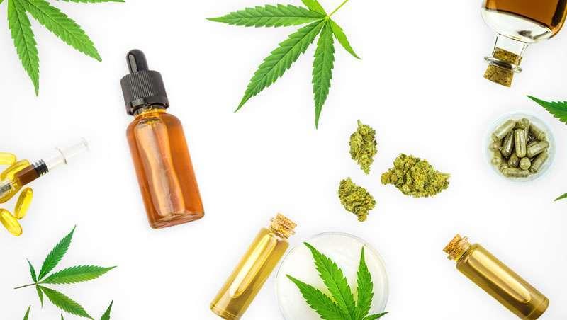 Um estudo assegura a não existência de efeitos adversos no uso do cannabis