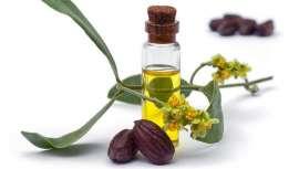 Um recente estudo demonstra que o óleo de jojoba possui um alto nível de estabilidade oxidativa, qualidade que pode fornecer a outros óleos, quando se mistura, atuando de uma forma mais que fiável e segura como ingrediente cosmético
