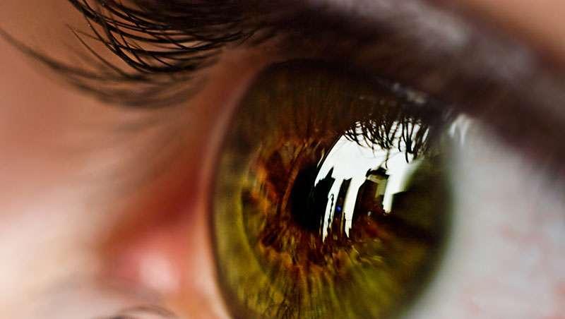Contaminación y salud visual