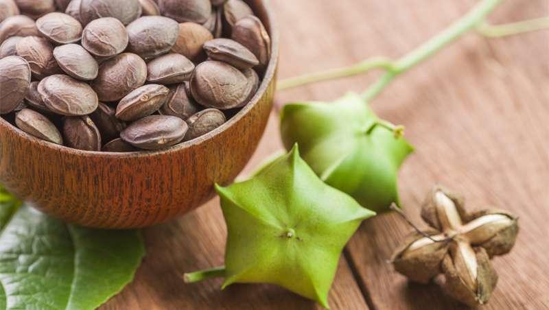 Aceite de Sacha Inchi, la cura de las pieles maduras
