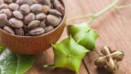Cada vez más protagonista, el aceite de Sacha Inchi, planta amazónica milenaria, posee múltiples y destacadas propiedades que en cuestión de belleza y salud apuntan directamente al freno del paso del tiempo y el envejecimiento