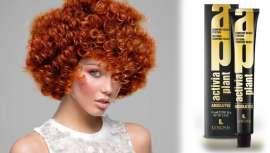 Absolute Flames são as cores para o cabelo, tendência de verão que ainda proporcionam uma total cobertura em cabelos com grisalhos e uma poderosa carga cromática que faz com que permaneçam e brilhem