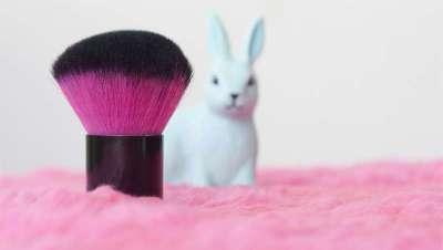 Prohibidas las pruebas de cosméticos en animales en Colombia