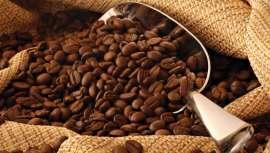 Café Arábica, el nuevo ingrediente para elixires de belleza sostenibles