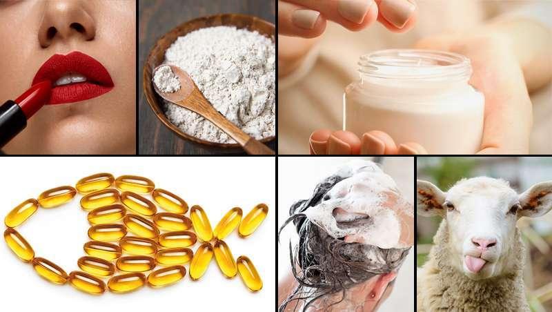 7 ingredientes muito, muito utilizados, que colocam no auge a tendência livre de crueldade nos cosméticos