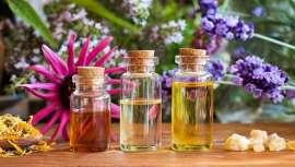 Utilizados desde a Antiguidade e por mais diversas culturas, os óleos essenciais são desde há algum tempo parte intrínseca do cuidado do corpo e mente. Hoje, os teus mais fiéis aliados para recuperar perante situações extraordinárias