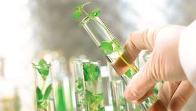 Arkopharma se despide de los excipientes químicos