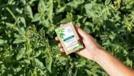 La marca farmacéutica está comprometida con el medio ambiente a través de la Klorane Botanical Foundation, la fundación de empresa para la protección y valorización del patrimonio vegetal
