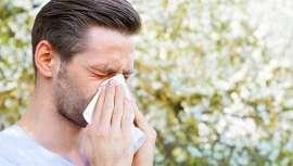 Combate la astenia primaveral y las alergias
