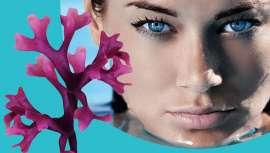 Este producto ha demostrado notables beneficios para suavizar la piel y densificar la dermis. Además de mejorar la hidratación de la piel y actuar sobre la reducción de arrugas