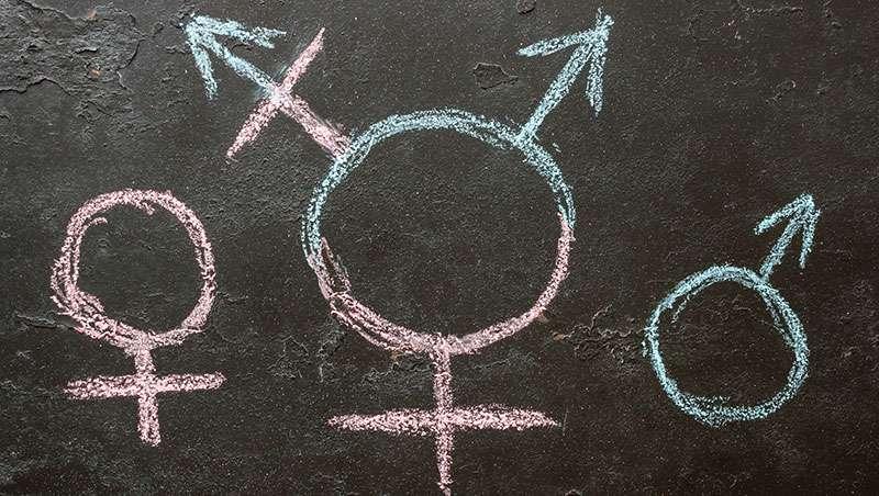 educación transgénero
