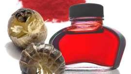El origen del carmín se encuentra en una variedad de cochinillas originarias de los países andinos. Se usa tanto en la industria farmacéutica y textil como en alimentación y en la fabricación de cosméticos