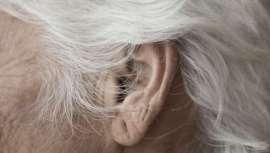 Científicos alemanes e ingleses descubren un tratamiento que revierte las canas prematuras