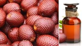 Utilizado desde siempre por los habitantes de la zona para el cuidado de la piel y el cabello, este aceite forma parte de la composición de muchos productos cosméticos