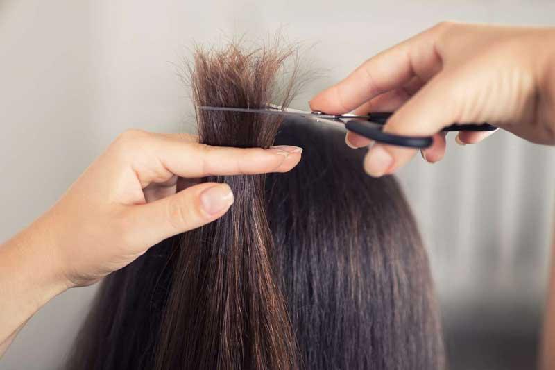 Pautas para recuperar el cabello después del verano