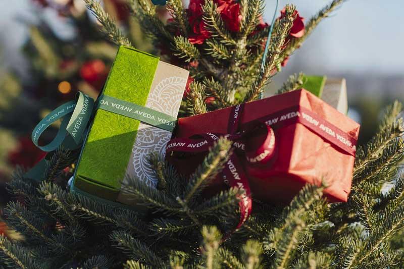 Aveda Navidad 2017, regalos de belleza de edición limitada y solidarios #LoveForNepal